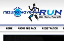 Mizuno Wave Run 2012