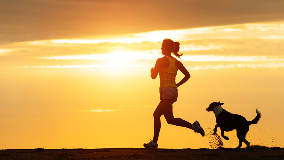 Why You Should Run With Your Dog