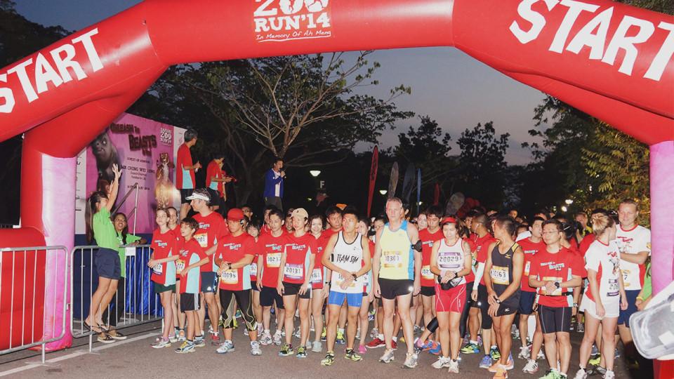 Safari Zoo Run 2014: Unleash The Beasts In You