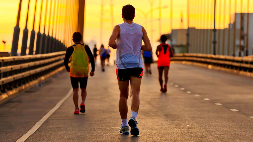 What You Need to Know Before You Sign up for a Race