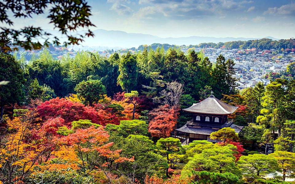 Spectacular Japanese Trail Running Routes for Culture Lovers