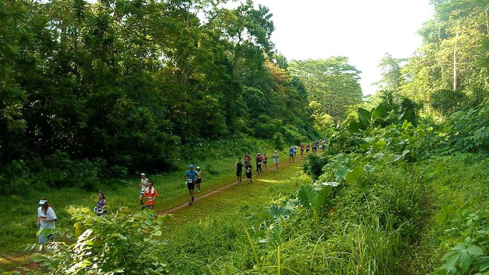 Green Corridor Run 2015 Edition Poses Unique Charity Challenge