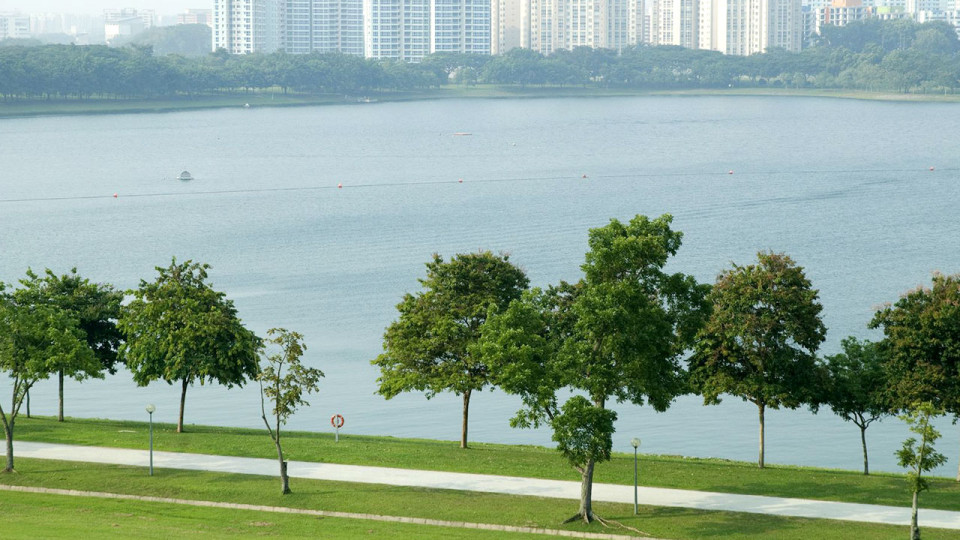 Best Singapore Park Connector Running Routes