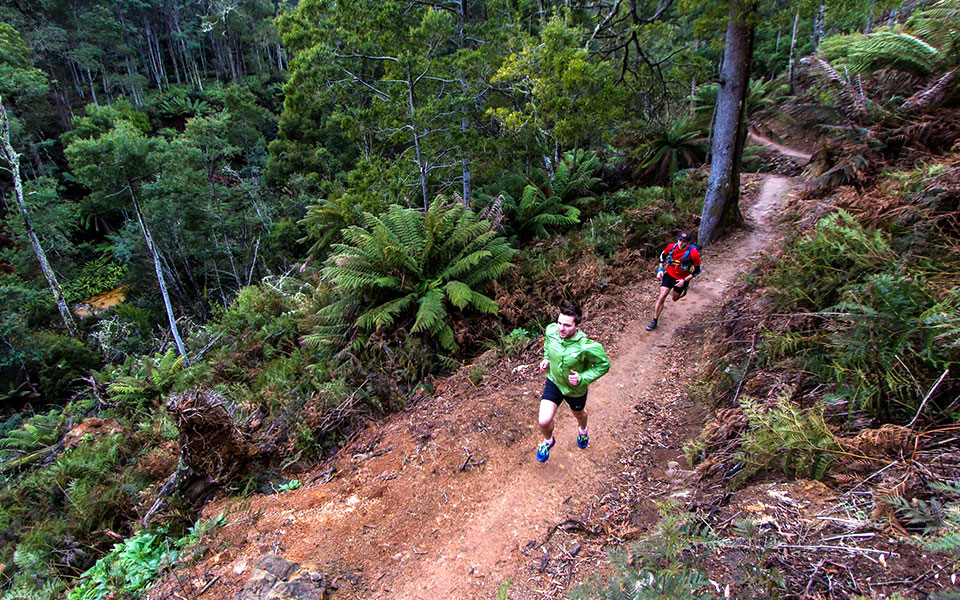 Run Like a Tiger at the Inaugural 3-Day Tassie Trail Fest!