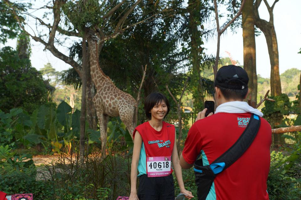 Safari Zoo Run