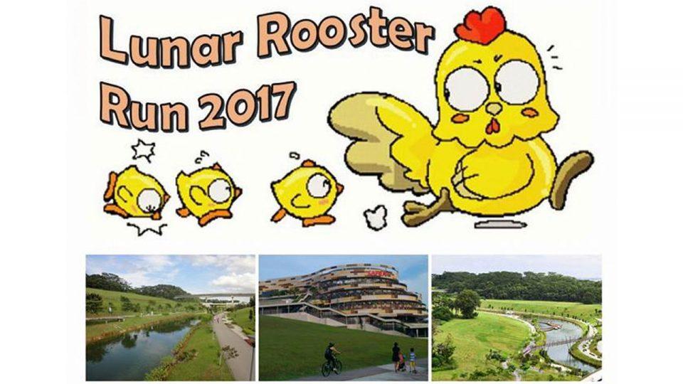 Lunar Rooster Run 2017