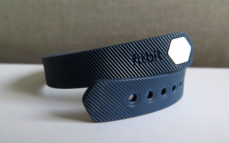 When I Saw the Fitbit Flex 2 on Her Wrist, I Was Shocked by My Reaction!