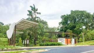 New Running Place in Singapore: 6 Things You Must Do at Windsor Nature Park