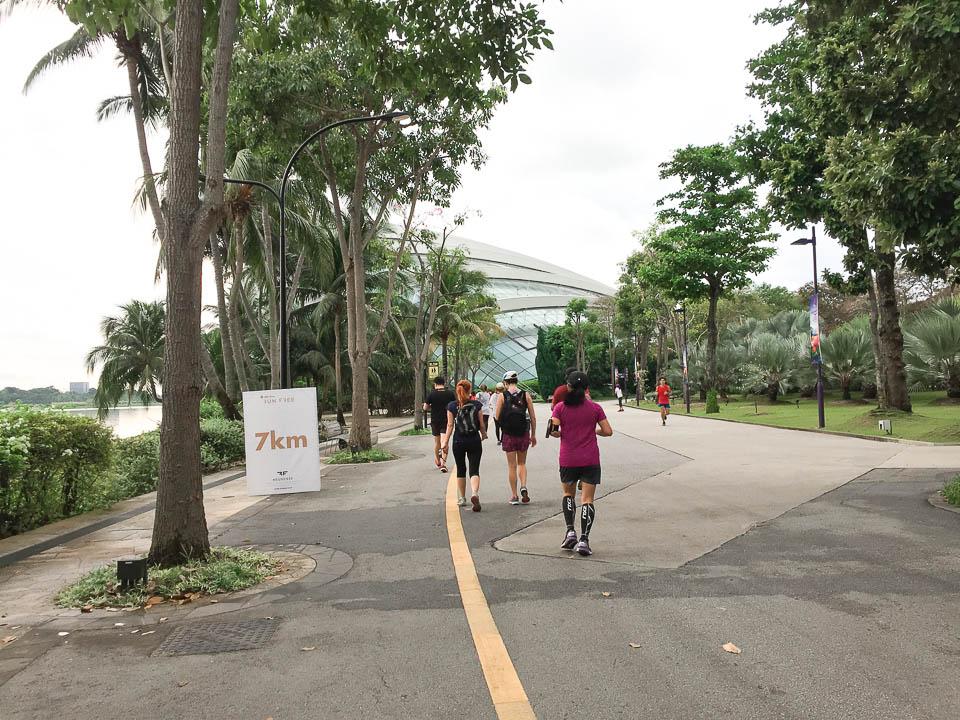 Run Free 2017 Race Review