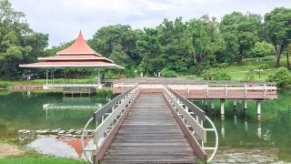 What You Need to Know About Our New MacRitchie Reservoir Park