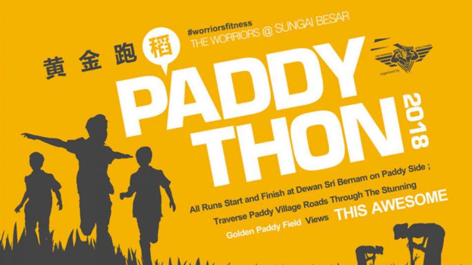 Paddython 2018