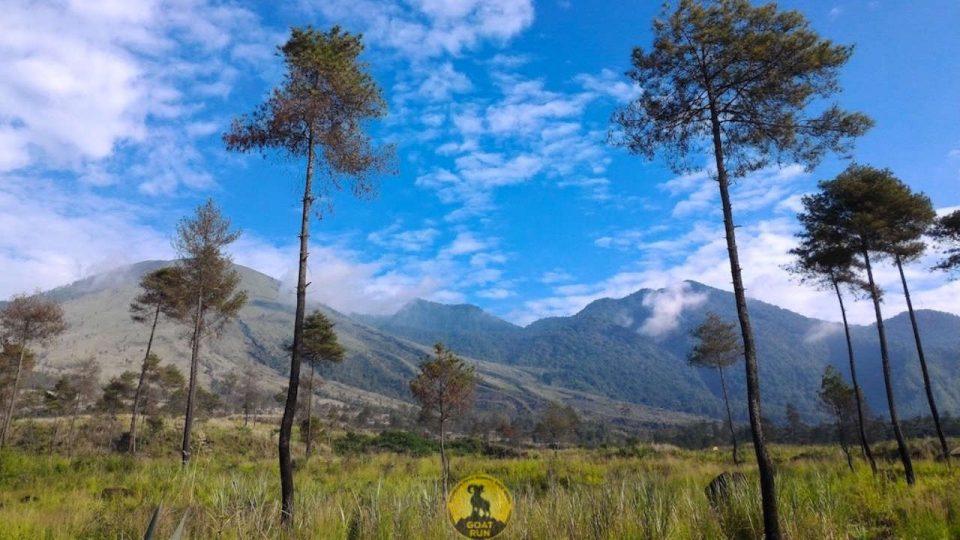 Goat Run Trail Running 2018 Series #2 Gunung Guntur