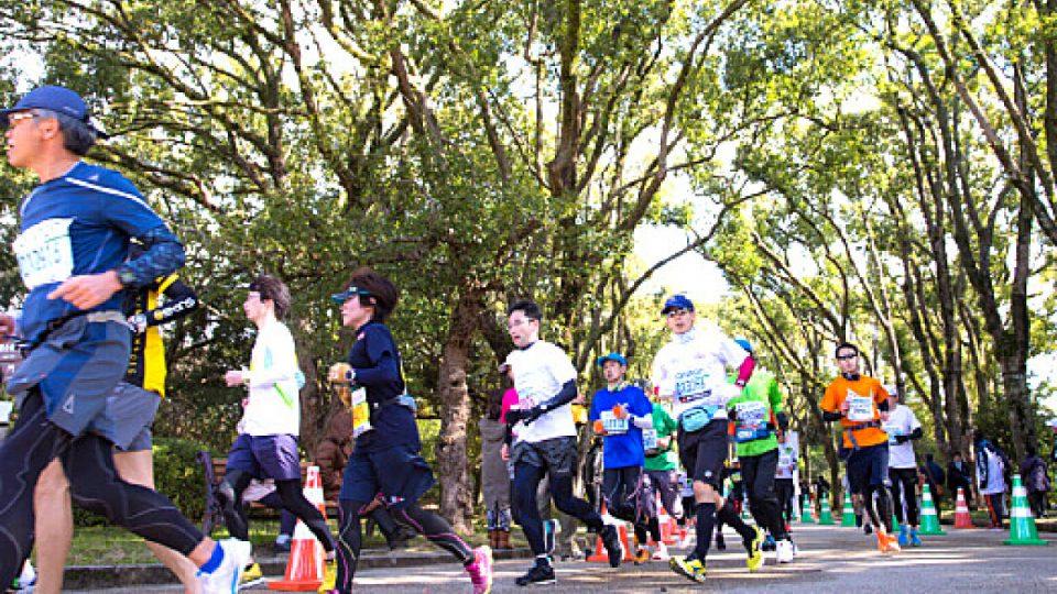 Kyoto Marathon 2018