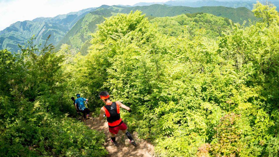 8th Tokyo Nariki Forest Trail Run 2018