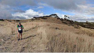 Tasmanian Road Runner