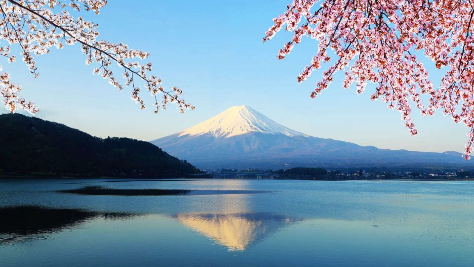 The 71st annual Fuji Mountain Race