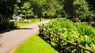 Singapore Running Parks In the West