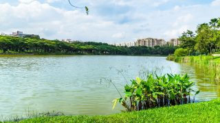 4 Singapore Running Parks in the South