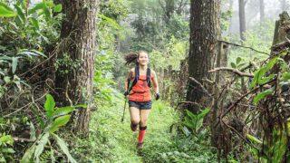 Tam Dao Mountain Trail 2018