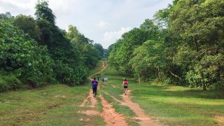 Forces of Nature Ultra 2018 Review