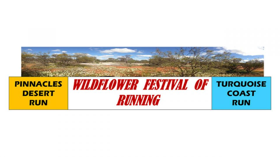 Wildflower Festival of Running: Pinnacles Desert Run