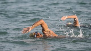 Open Swim Stars Sunset Race Series