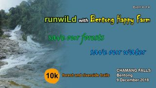 RunWild at Chamang Falls 2018