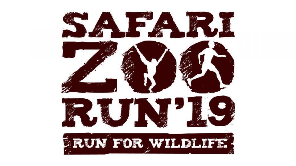 Safari Zoo Run 2019