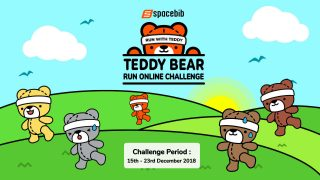 Teddy Bear Run Online Challenge 2018
