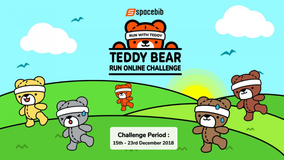 Teddy Bear Run Online Challenge 2018