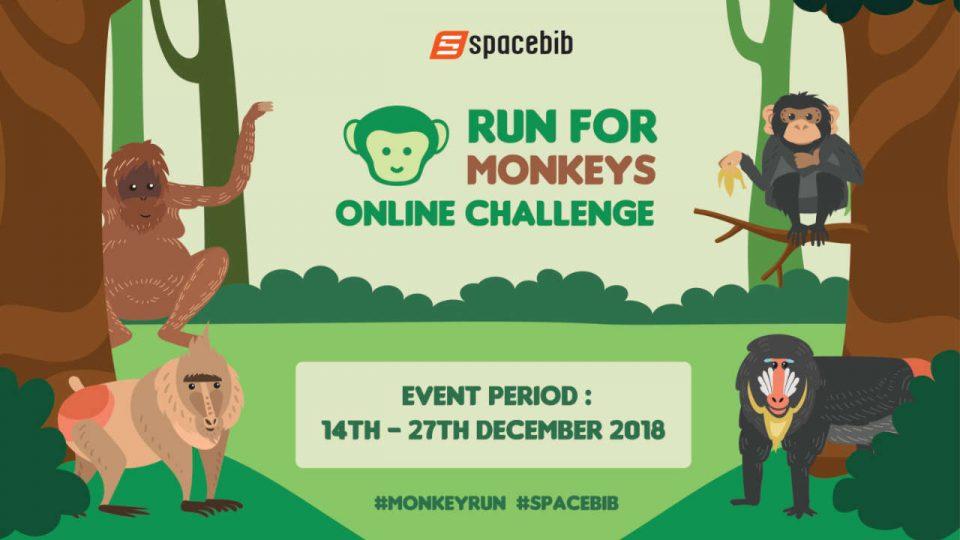 Run For Monkeys Online Challenge 2018