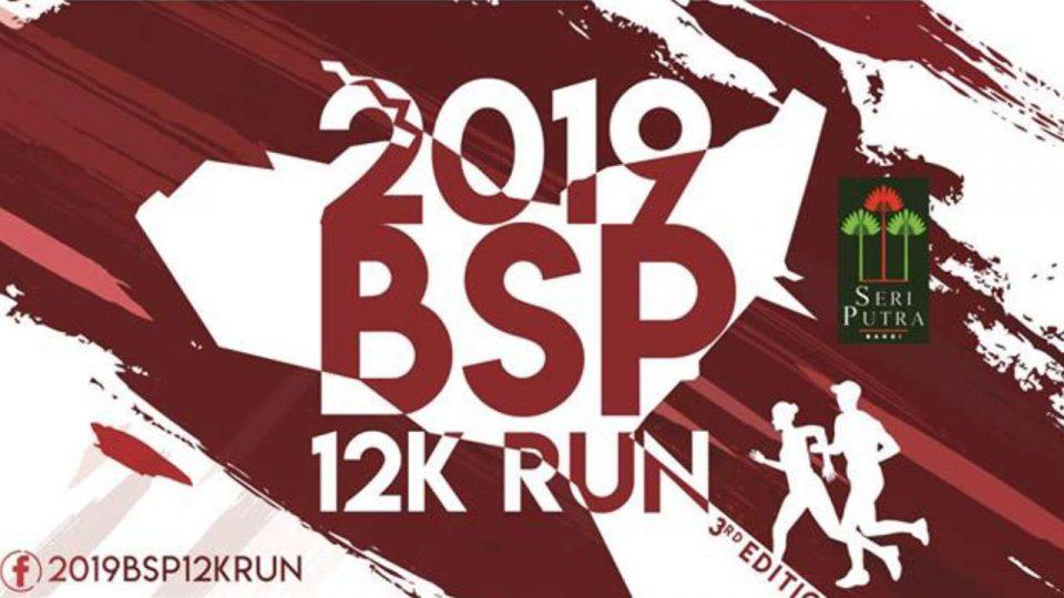 2019 BSP 12K Run