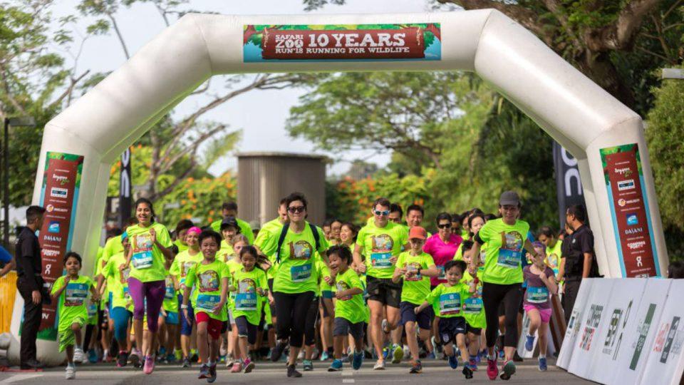 Safari Zoo Run 2019: Why Should We Run For Wildlife