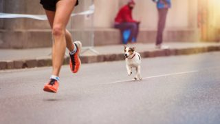 50 Fascinating Facts About the Joys (and Weirdness) of Running